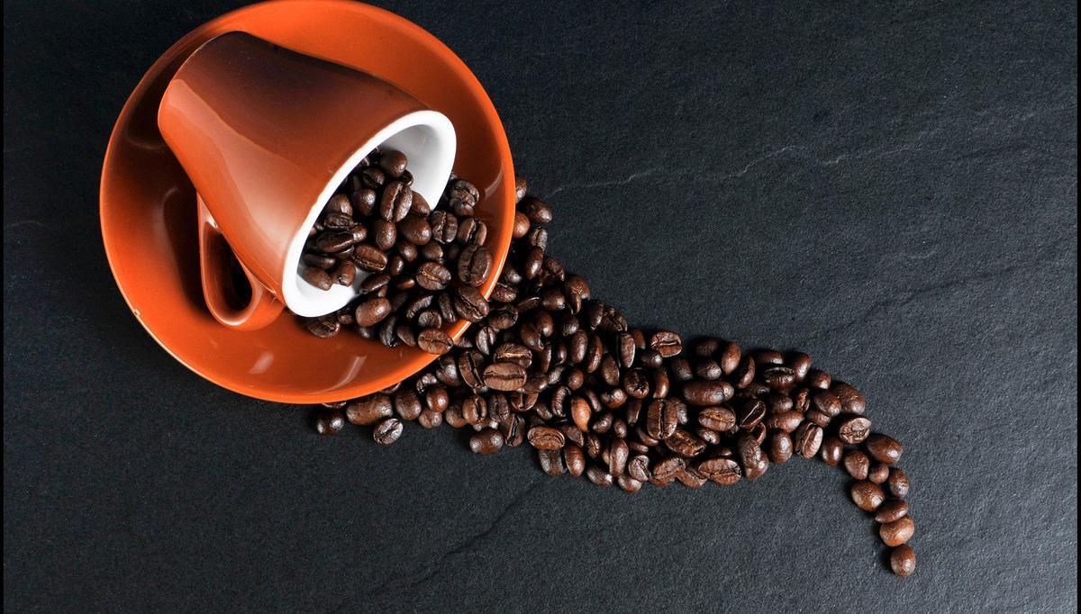 对于咖啡渣的用途,对花卉爱好者来说,养花是最合适不过的了,不过对于咖啡渣养花有花友尝试过但失败了,那么要如何做咖啡渣肥料才能被植物吸收呢?   先来看咖啡渣肥料的好处: 咖啡渣里面含有大量的氮化物,非常适合喜欢酸性土壤的植物,所以在把咖啡渣当做肥料的时候一定要注意不是所有植物都适合拿咖啡渣当做肥料的。给喜欢偏酸性土壤的花卉做肥料,才能事半功倍。   咖啡渣如何转为园艺用堆肥,这是非常重要的一个环节,一定要腐熟后才可以做肥料施用,不然不仅达不到肥效,还会烧根,咖啡也是属于农产品,虽然经过烘焙等过程,但是基本质不变,亦适合制作堆肥。  堆肥案例一:  干性堆肥: 将咖啡渣置于阳台,需每日翻搅,约十日后即可放入盆栽内。  湿性堆肥: 将咖啡渣置于阳台,不去翻搅任其发霉,数日后即发现布满霉菌,再与砂土搅拌后放入盆栽内。  堆肥案例二: 把咖啡渣装进肥料袋〈编织袋,可透气的,不一定原是装肥料的〉,放在太阳不会直射的地方。堆肥完全发酵的原理是要能达到60℃,咖啡渣太少就很难达到高温期,所以我把它放进肥料袋保温。两三天后因为咖啡渣里面含的高量碳水化合物先开始分解,就会开始发热。等到发热后3-4天,因为我每天不断的加入新的渣,就得翻堆让没热过的渣翻到中间有机会发热。  最好是发酵到己经没有原来的咖啡味,甚至有一点放线菌发出来的霉味,就表示已进入堆肥的后熟期,已经可以用了,不会烧根。不过还是得看您用在什么植物,有些草花比较幼嫩,很容易发生肥害,那就再等几天给它后熟。一般翻堆比较好的,发热期约21天,后熟期不需要翻堆,却得40天左右。〈冬天气温低,得加覆盖才能达到上述的时程,不过还是会慢一点〉  注意事项:  我们要衡量花器的大小,适量使用咖啡渣,可不要觉得咖啡渣是肥料就死命的朝土壤里放咖啡渣。