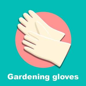 TIPS📝  We take an interest in gardening for a variety of reasons—higher quality produce, exercise in the great outdoors etc. When you're just getting started, gardening can be intimidating.GFinger will help you learn the basics, starting with these steps. Step 1: Gather Your Gear Proper tools provide us more comfort and efficiency, which means less work for us! Here's what you'll need to get started. 1 Trowel - Used for weeding and digging small holes. 2 Gardening gloves - As much as we like getting our hands dirty, we don't like getting them that dirty. A good pair of gloves can also protect your hands from bugs and prickly plants and weeds. 3 Sun hat - For UV protection, make sure this is wide-brimmed and cinches. 4 Watering can or hose – What you need will vary depending on your garden's water needs and proximity to your water source. 5 Wheelbarrow - For larger gardens, you'll need one to transport mulch, dirt, and compost. 6 Roundhead shovel - For digging larger holes. 7 Rake - Ideal for spreading mulch, and gathering or transporting debris that has collected around your garden and between plants. 8 Shears - Use to prune away browning leaves or snipping herbs. 9 Pitchfork - This is an essential tool if you are creating a compost heap or pile. Continued…