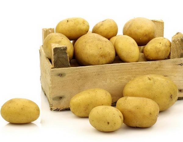how to grow potatoes in colorado