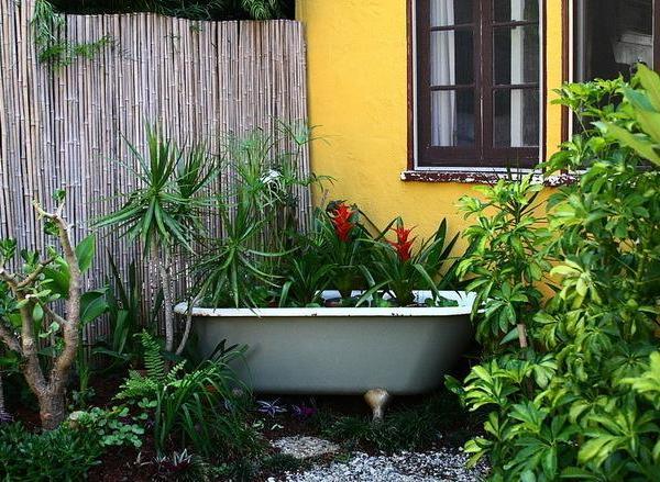 Planting Flower Pots Thriller Spiller Filler   Container Gardening Ideas