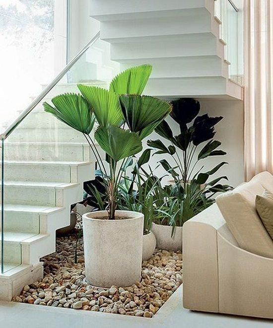 15 Unique Ideas For Indoor Garden Under Stairs Andy Garden Manage Gfinger Is The Best Garden Manage App