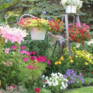 Genius Ways to Turn Junk into Enchanting Garden