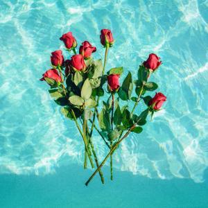 Rose-Art & Symbolism