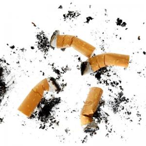 抽完的烟头来养花,虫子全死光!  夏天养花最烦人的是啥?那肯定就是招虫子啦!但是自从有了废弃烟头,这个问题就立马迎刃而解了!  操作步骤:  1、将家里废弃的烟头全都收集起来,装在容器中备用。  2、将烟头中的烟丝拿出来,按照1:20的比例兑上温水,浸泡24小时以上即可。如果想要杀虫效果好,还可以在烟头水中加入一小勺洗洁精。  3、浸泡24小时候,用滤网将烟丝过滤出来,留下的烟丝水就可以拿来杀虫了!  4、将烟丝水直接倒入干净的喷壶中,直接朝着有虫子的叶片上喷洒,大概3-5天喷洒1次,基本2-3次后,就可以将虫子全都杀死了!  5、烟丝水中含有微量毒素,对于红蜘蛛、蚜虫、小黑飞等植物,都有很好的杀虫效果。各位花友不妨试一试哦!  6、家里剩下的烟灰也不要丢,可以直接沿着花盆边沿薄薄地撒上一层,这样可以阻碍小黑飞在土壤表面产卵,而且浇水的时候,烟灰还会随着水流渗透到土壤中,也可以杀死土壤中的细菌。   抽完的烟头来清洁,去污超级强!  平常抽烟剩下的烟灰,可是去污力超强的好东西!  如何操作?  1、将抽烟剩下的烟灰收集起来,和烟丝一起放在温水中浸泡24小时以上。  2、将烟丝过滤出来,剩下的烟灰水装在喷壶中,直接喷洒在家里有污渍的地方。像是马桶、瓷砖或是厨房等顽固油污比较重的地方,稍微喷洒几次,基本上就可以擦干净了。  3、烟灰中含有碱性物质,可以和大部分油污产生中和反应,从而起到类似于洗洁精的作用,既省水又环保,简直是家家必备的好东西!   抽完的烟头放鞋子里,臭味全没了!  最近天气太潮湿了,感觉自己的鞋子每天都是湿的,如果家里没有烘干机咋办?不如就用烟丝来解决吧!  如何操作?  1、收集抽完的烟头,将烟丝全都扒出来,装在卫生纸或纱布中备用。  2、晚上睡觉前,咱们可以将装有烟丝的纱布塞到鞋子里,只需要一晚上的时间,鞋子里的臭味基本上都消失了。  3、如果有些花友的脚总是因为出汗发臭,也可以用浸泡好的烟丝水,直接拿来泡脚,除臭的效果也是非常棒的!  4、将烟丝包放在衣柜中,也可以去除潮湿发霉的味道,大家可以试一试哦!   抽完的烟头丢卫生间,蚊子苍蝇再也不来了!  夏天最讨厌的就是蚊子和苍蝇了,一个咬人,一个每天在耳边嗡嗡叫,而且还经常在卫生间那种潮湿的地方产卵,简直让人烦不胜烦!不过别担心,现在花花就教你个好办法啦!  如何操作?  1、将烟头里的烟丝全都扒拉出来,然后装在卫生纸或者小的纱布袋中。  2、烟丝放在卫生间,能够防止蚊子、苍蝇产卵,而且还具有杀菌除臭的作用,简直一举两得!