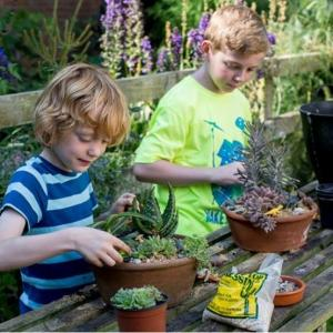 Discover 10 fun-filled ways to entertain your kids