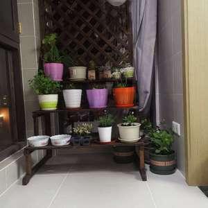 入了几盆新花,阳台搞了个新花架