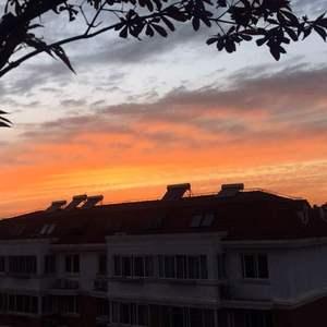 今日份夕阳