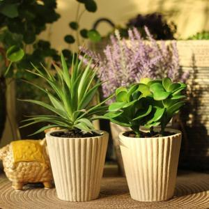 Flower Pots on a Cute Indoor Plant Stand