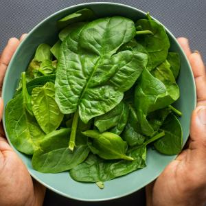 Healthy Food-Spinach