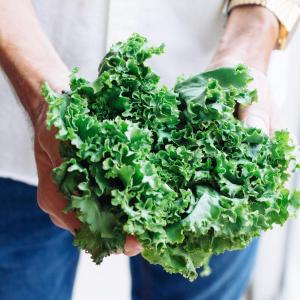 Nutritional Kale