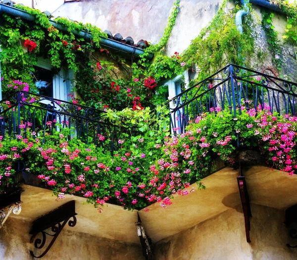 阳台花园打造步骤