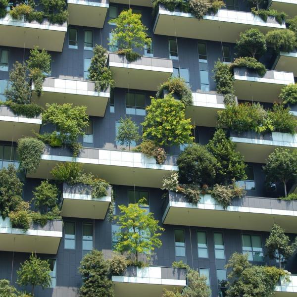 Six Unique Ideas For Balcony Gardening