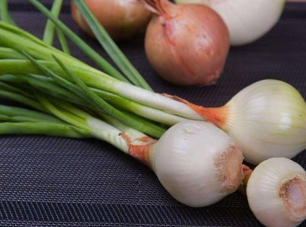 How to Grow Vidalia Onions