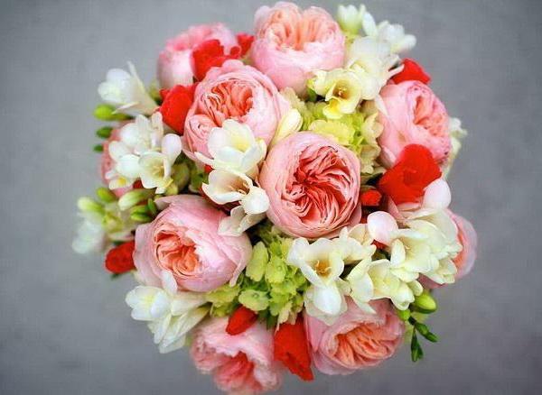 The Best Flowering Perennials