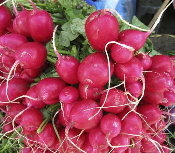 How to Know When to Pick Radishes