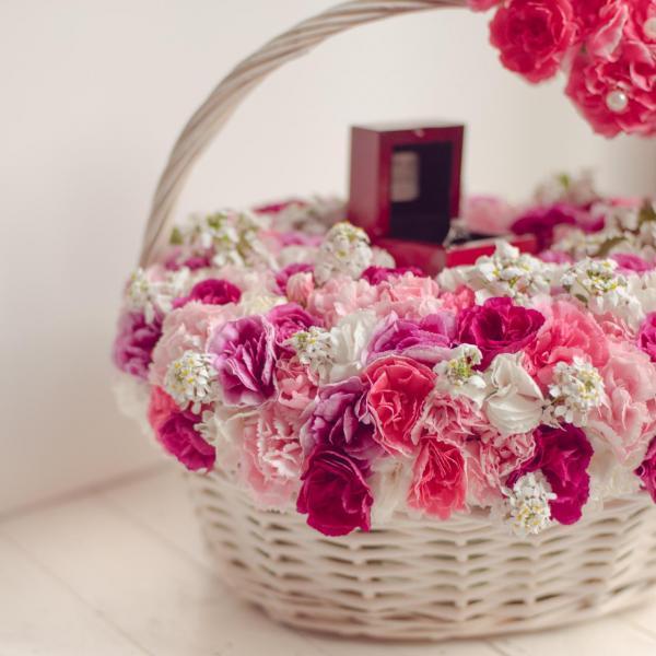 Carnation/Clove pink