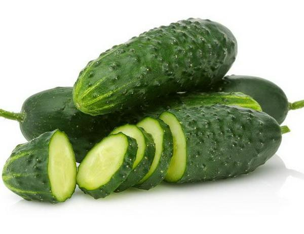 How to Grow Cucumbers Vertically in Gardens with Small Spaces