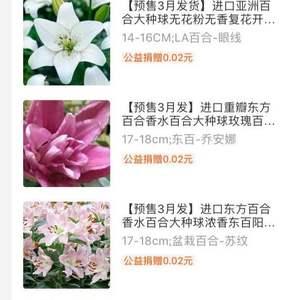 买了六颗新品种,已经种下,期待花开,记录一下