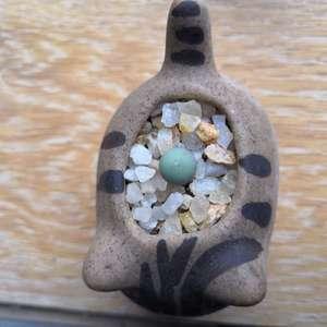 """我新添加了一棵""""鸽子蛋""""到我的""""花园"""""""